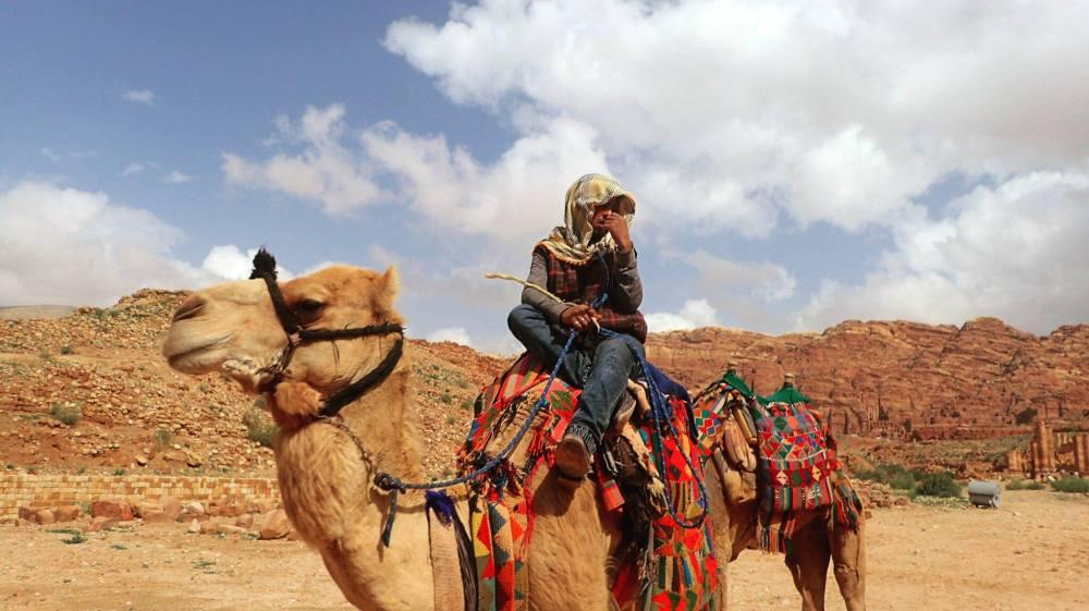 Camel .jpg